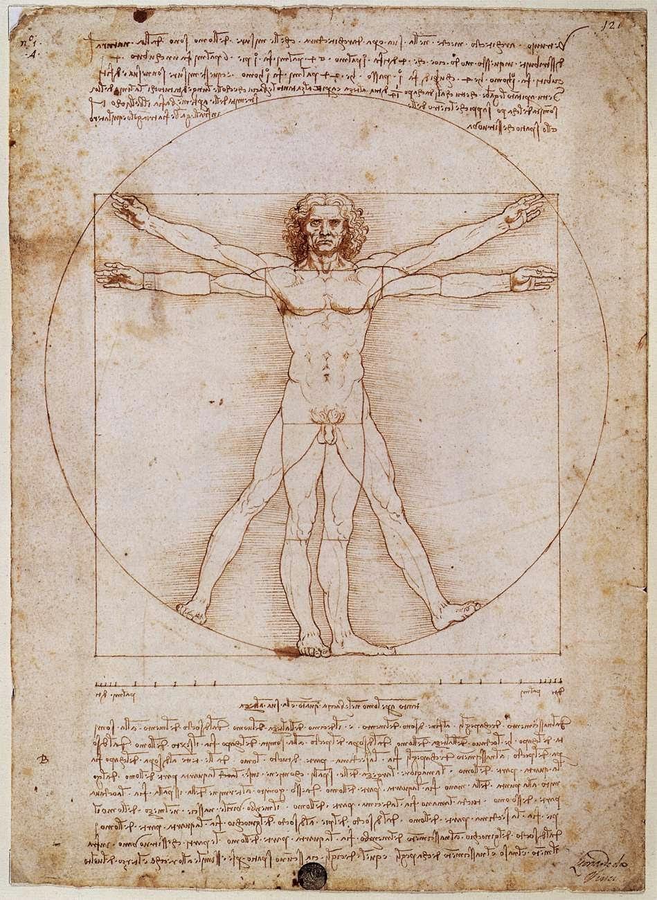 Fisioterapia: Hombre de Virtuvio y la Historia de la Antropometría.