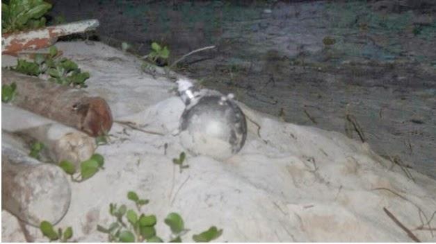 Penduduk Maldives Menjumpai Boeing Aircraft Fire Extinguisher