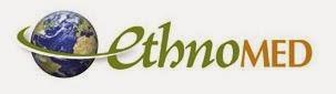 EthnoWeb logo