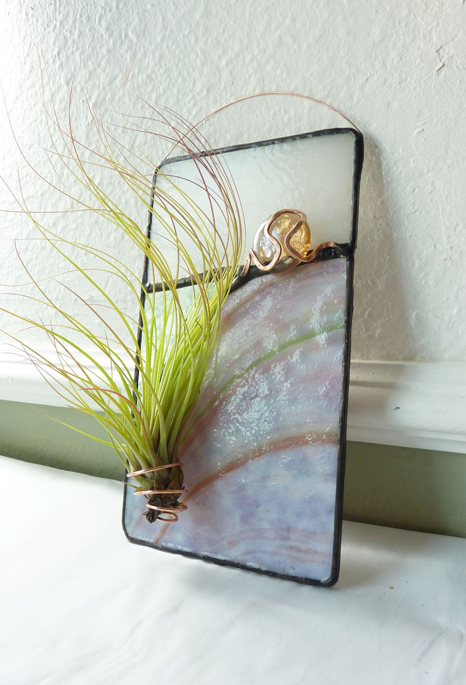 Glass Potential Air Plant Art
