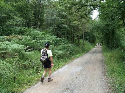 L'amic Ricard caminant per la pista del Vilardell