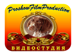 Студия ProshowFilmProduction