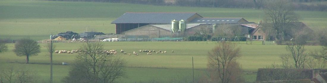 Ferme-Fromagerie-Les Vallées-Gaprée-Orne-Gîte-Gouda-Normandie-Frisonne-Agneau-Mouton