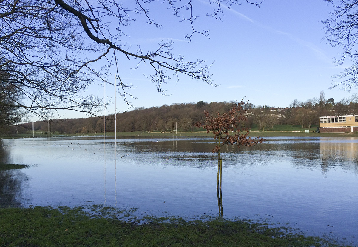 Flooded rugby pitches at Sparrow's Den, at the bottom of Corkscrew Hill, West Wickham.  24 February 2014.