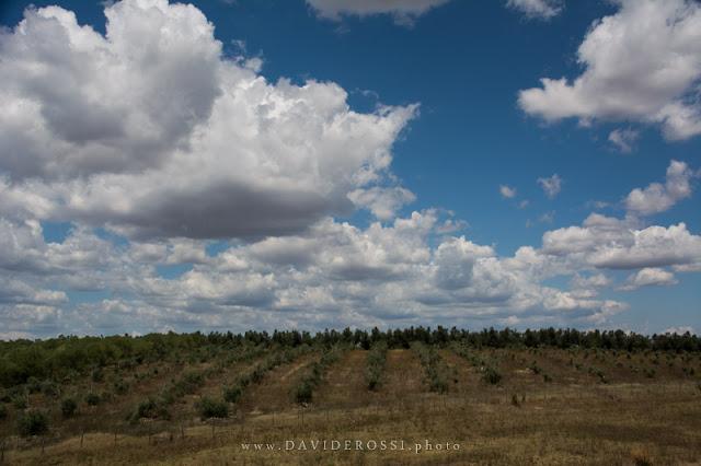 Lazio panorama - le basse nuvole