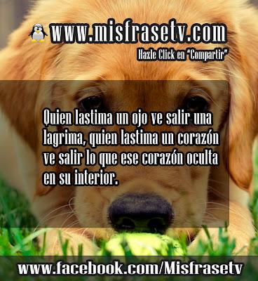 Bellas Frases de Lastima para Facebook y twitter