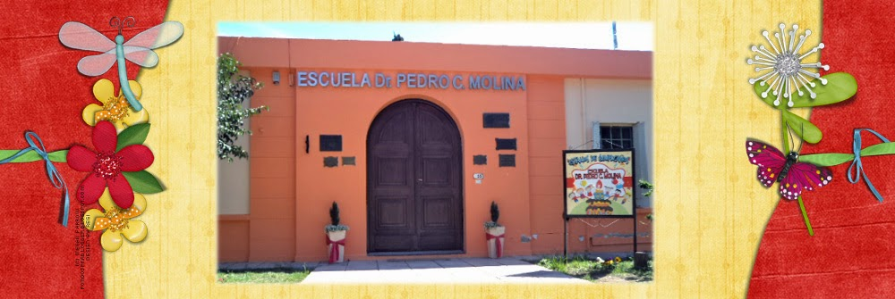 Escuela Dr. Pedro C. Molina