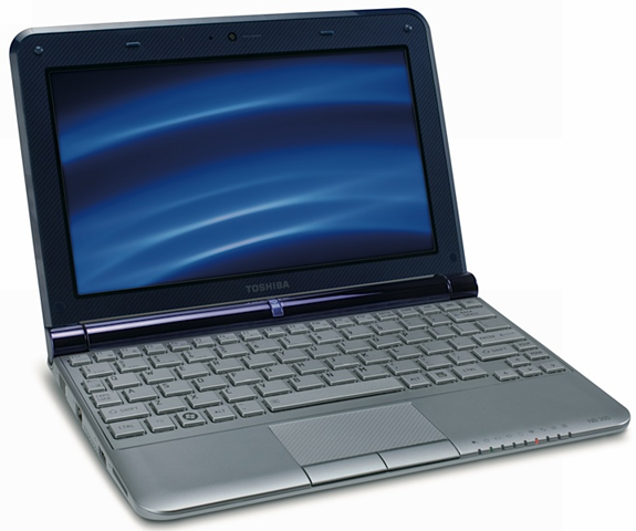 Toshiba Netbook NB305