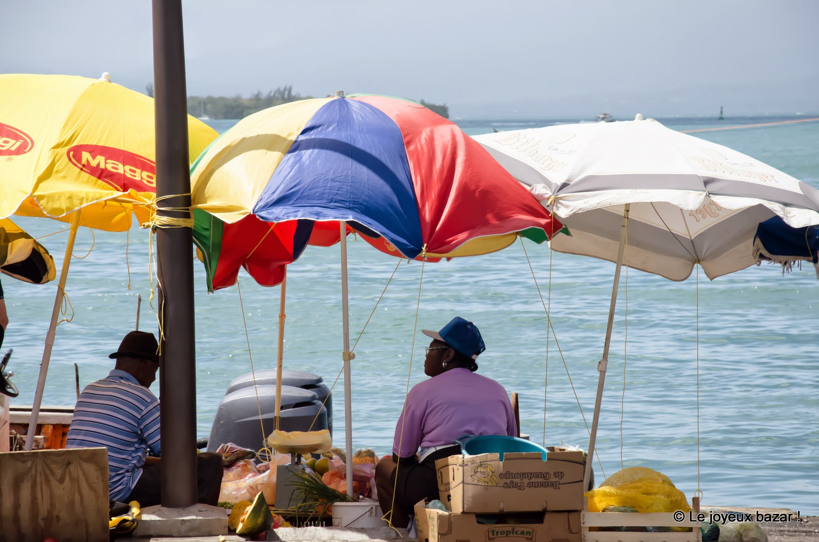 Guadeloupe - Pointe à Pitre  - la darse