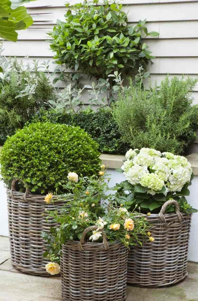 15 stunning garden designs and ideas for small gardens for Plants for small gardens