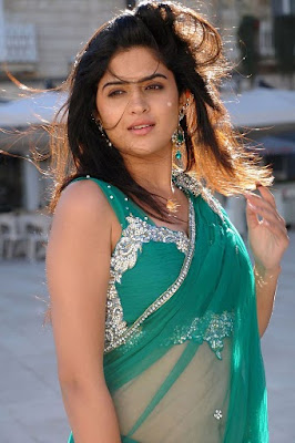 Deeksha Seth Hot in Saree