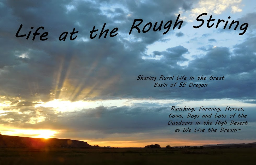 Life at the Rough String