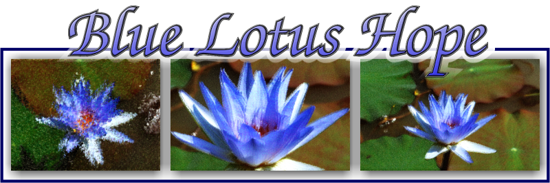 Blue Lotus Hope