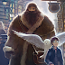 [POTTER COLECIONADORES] Novo box de Harry Potter!