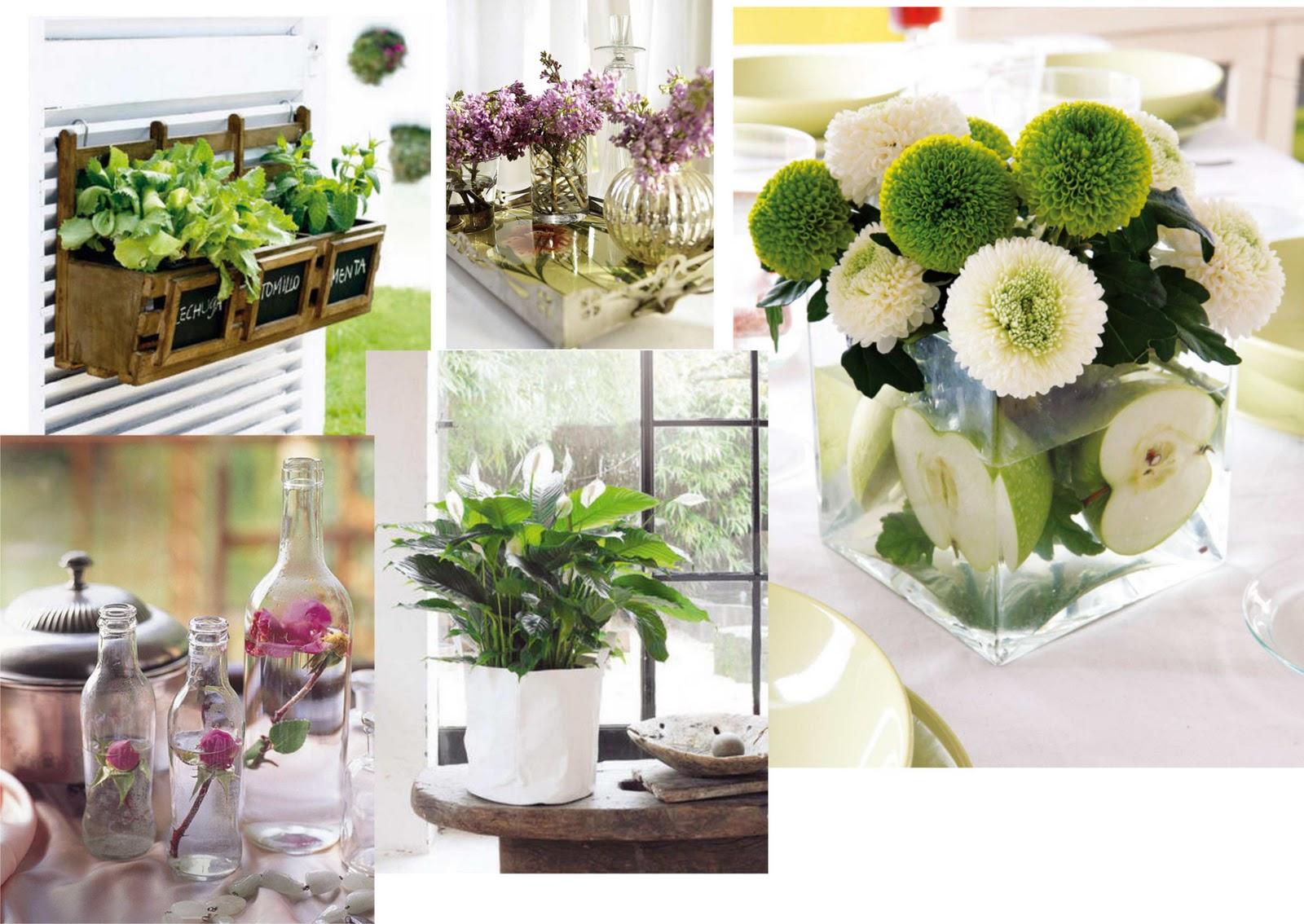 Deco espacios naturales decorar con plantas virlova style for Como hacer adornos con plantas naturales