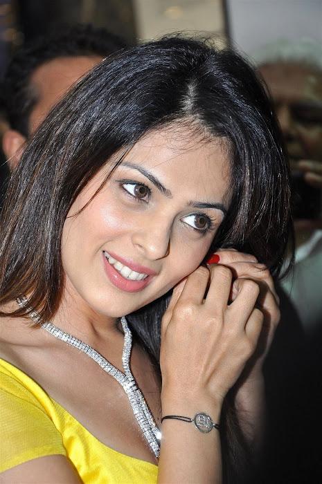 Anjana Sukhani in yellow saree