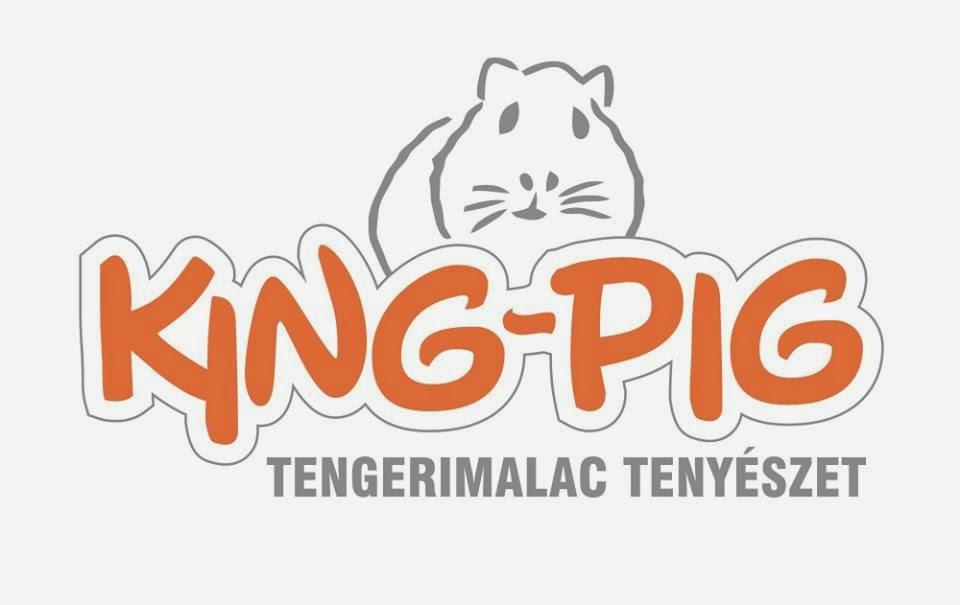 King-Pig tengerimalac tenyészet
