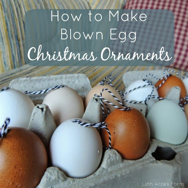 Linn Acres Farm: How To Make Blown Egg Christmas Ornaments
