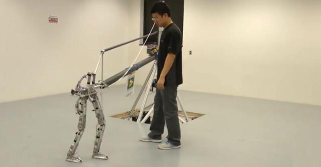 AMBER 2.0 Humanoid Robot