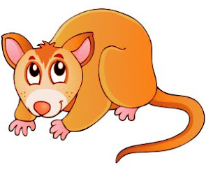 The Orange Possums