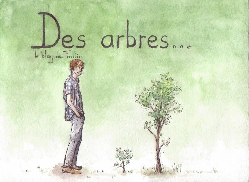 Des arbres...