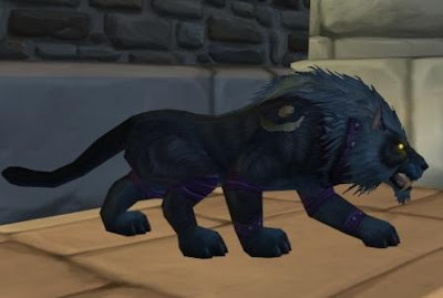 Feral Druid