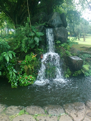 Nurhanna: Taman Rekreaasi Taman Bunga WILADATIKA Cibubur