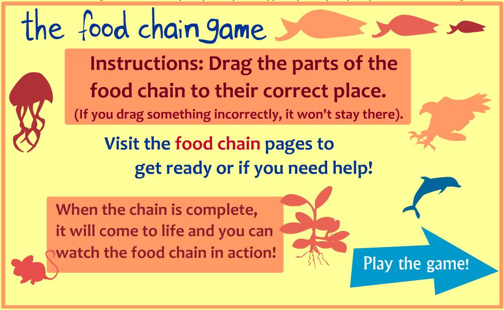 http://sheppardsoftware.com/content/animals/kidscorner/games/foodchaingame.htm