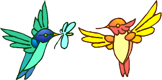 Two Colorful Birds Flying Free Clipart