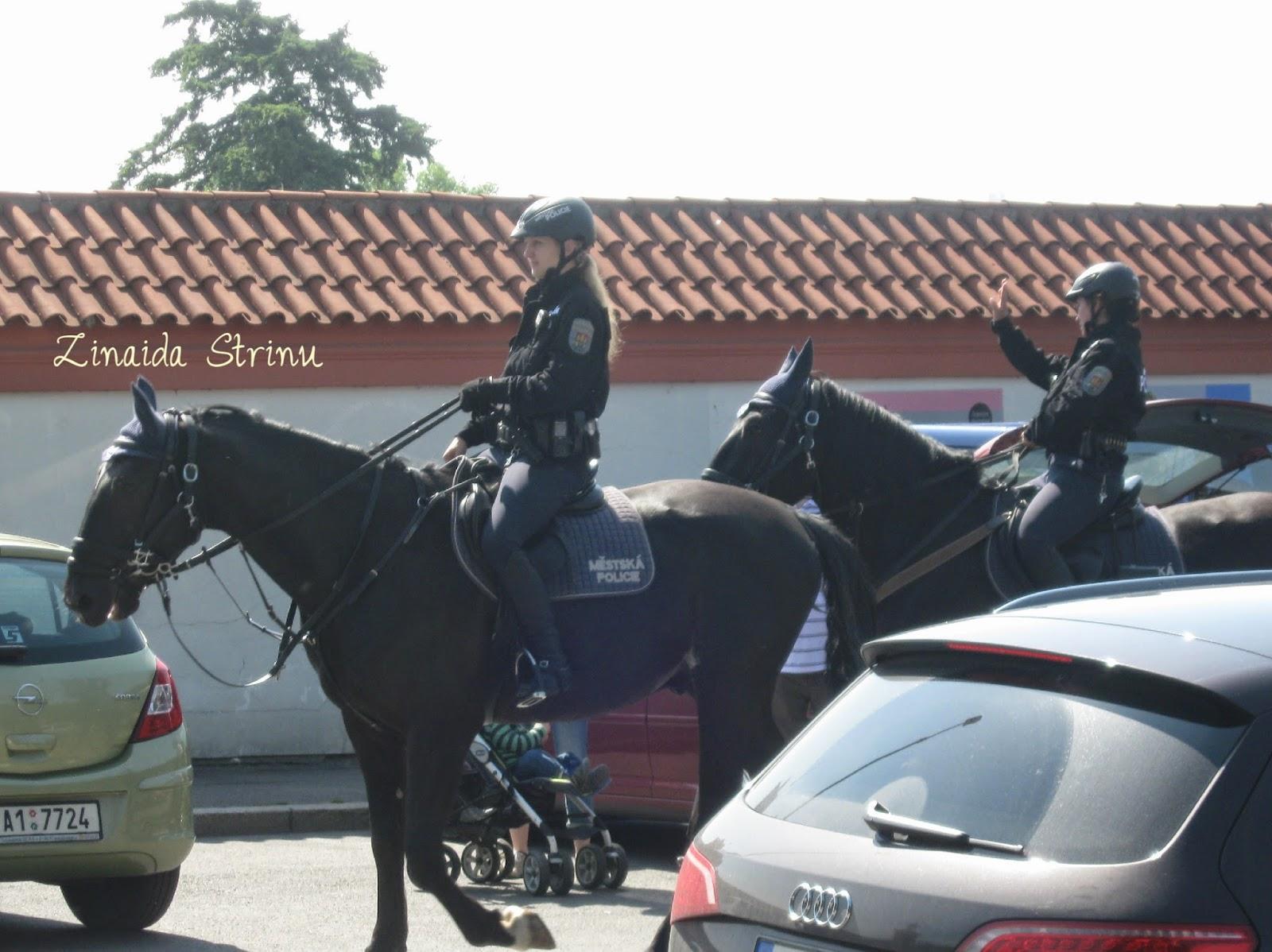 politia-calare
