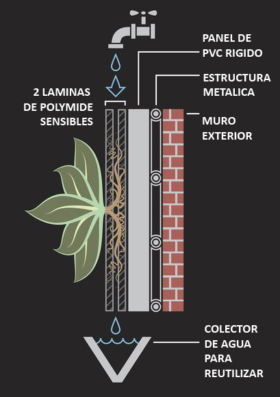 Arte muros techos verdes arq responsable prt2 for Tipos de muros verdes
