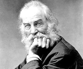GAY ICON: Walt Whitman