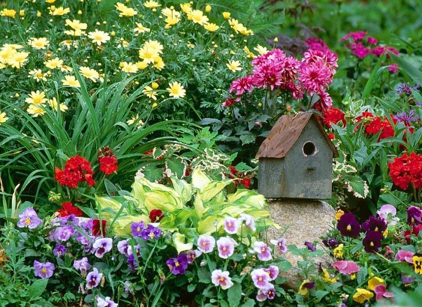 fotos de jardim florido : fotos de jardim florido:Studio Floral Dora Santoro: Jardins Floridos