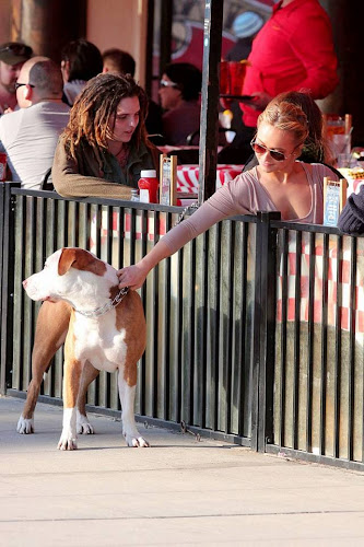 Hayden Panattiere, Dog, hollywood, hotel, lunch,