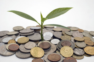 Desarrollo sustentable: el camino hacia el futuro