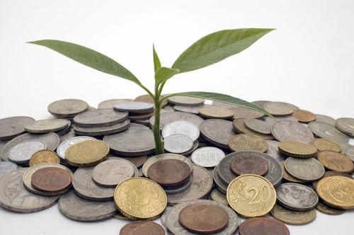 3 Ideas para Negocios Eco