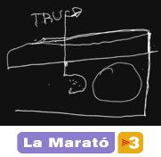 Participación en la Marató TV3