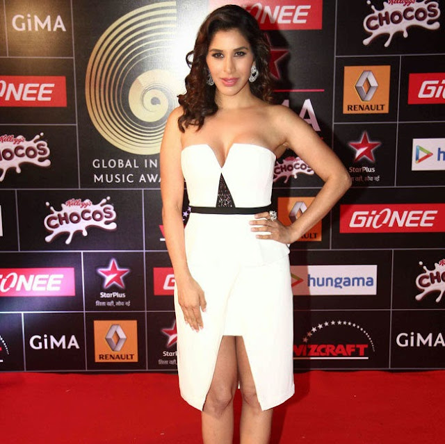 Celebrities at GIMA Awards 2015 Pictures 27.jpg