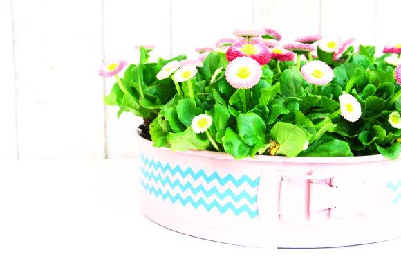 DIY Blumentopf aus alter, defekter Kuchenform