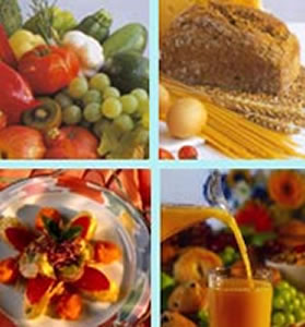 como engordar mejores nutrientes