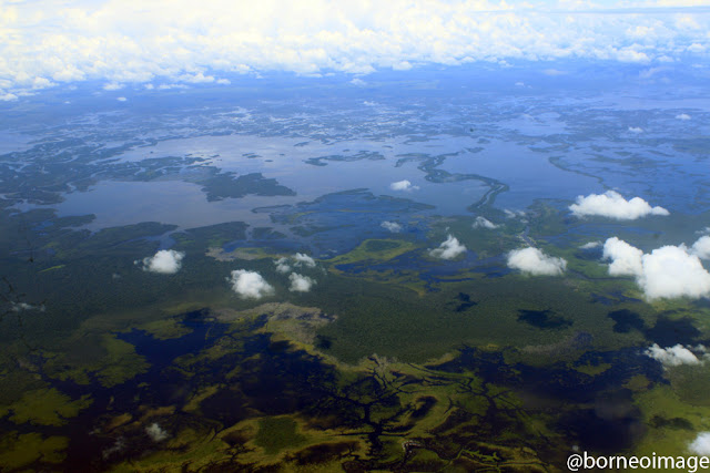 sentarum lake, heart of borneo, west kalimantan