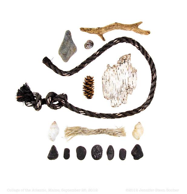 beach stone, driftwood, rope, birch bark, whelk shells, and periwinkle