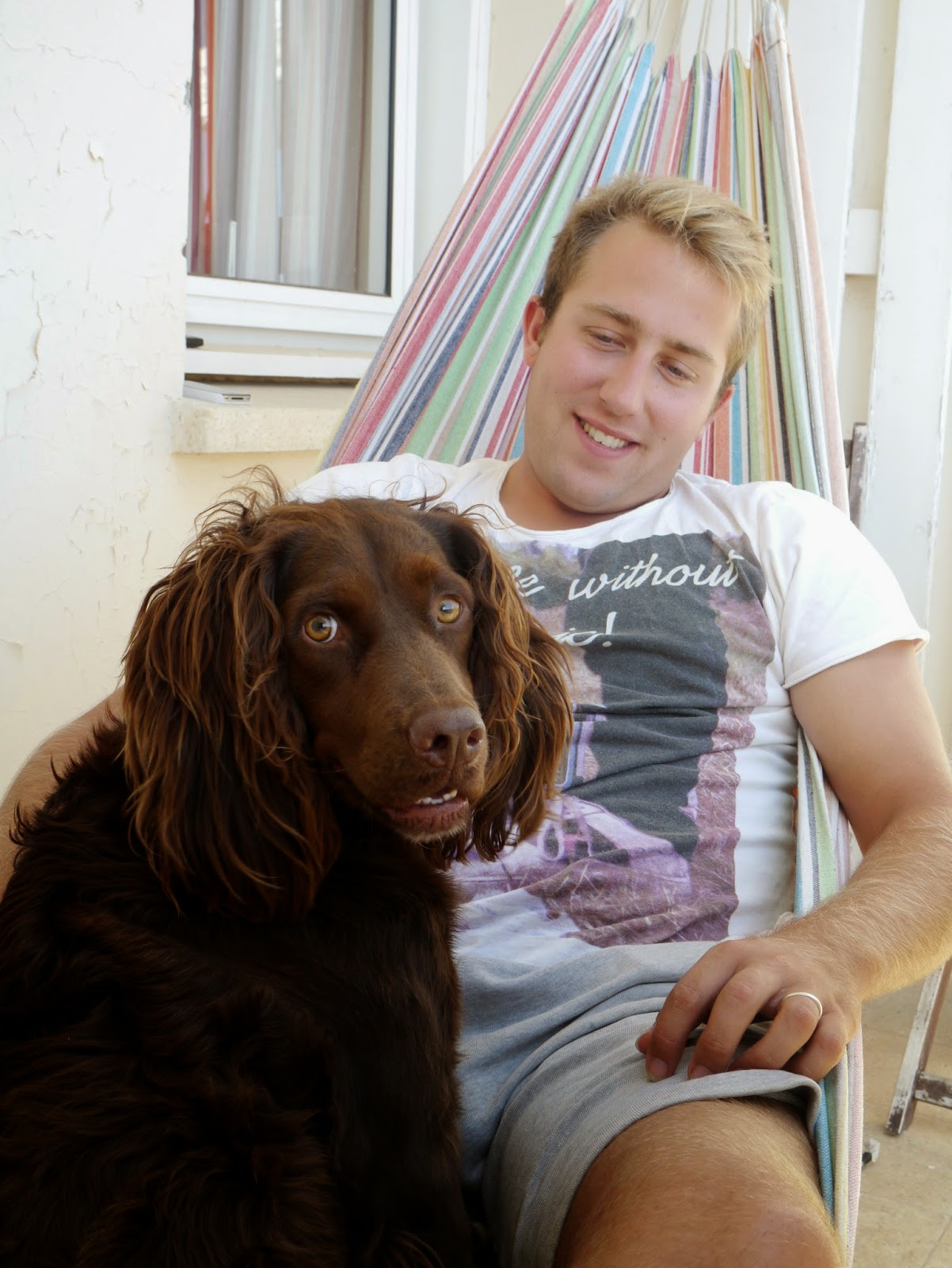 Man in a hammock and springer spaniel dog