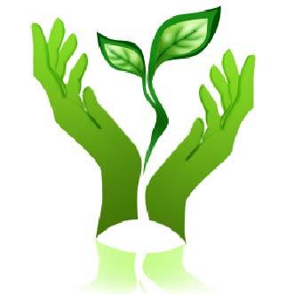 Contoh Teks Pidato Hari Pohon Indenesia Terbaru 2013