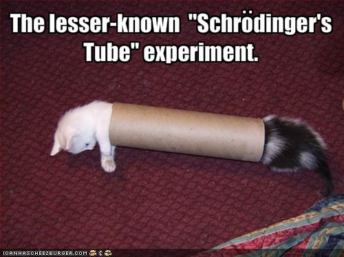 funny images of animals with captions. Cool Funny animal pictures with captions!