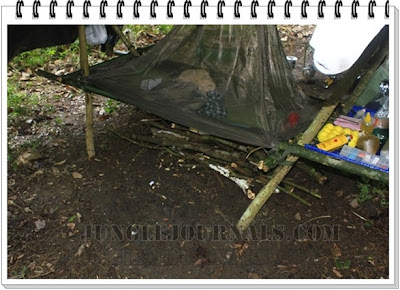 Jungle Camping Trip In The Wet Monsoon Season Collected Firewood