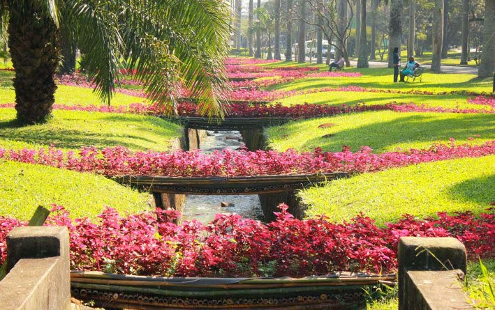 flor do jardim tiete : flor do jardim tiete:Rose Dutra: Instalação colore Jardim Botânico