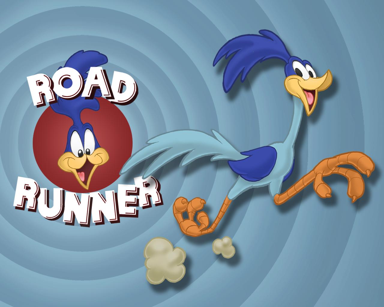 Road runner cartoon wallpaper cartoon images - Pics of road runner ...