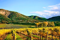 Best Honeymoon Destinations In USA - Napa, California