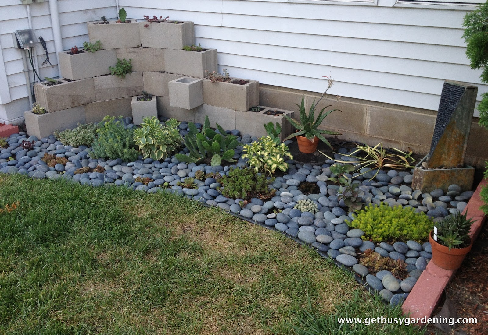 Succulent zen garden for Amenager petit jardin 50m2